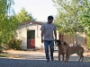 Gli spazi per i cani